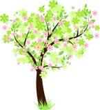 όμορφο floral δέντρο Στοκ Εικόνα