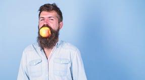Όμορφο hipster ατόμων με τη μακριά γενειάδα που τρώει το μήλο Η διατροφή διατροφής ατόμων τρώει τα φρούτα Υγιής καλή ιδέα πρόχειρ στοκ εικόνες