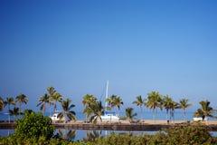 Όμορφο laguna με τους φοίνικες, μπλε ουρανός Στοκ Εικόνες