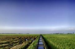 Όμορφο lanscape του πράσινου τομέα ορυζώνα στοκ φωτογραφία με δικαίωμα ελεύθερης χρήσης