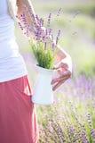 όμορφο lavender πεδίων Στοκ φωτογραφίες με δικαίωμα ελεύθερης χρήσης