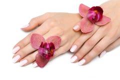όμορφο orchid καρφιών μανικιούρ &ch Στοκ Εικόνες