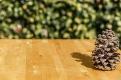 Όμορφο pinecone σε έναν ξύλινο πίνακα σε ένα patio Στοκ Εικόνες