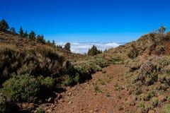 Όμορφο Tenerife ηφαίστειο - EL Teide Στοκ εικόνα με δικαίωμα ελεύθερης χρήσης