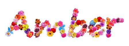 Όνομα Amber λουλουδιών Στοκ Εικόνα