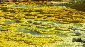 Όξινες λίμνες στην περιοχή Dallol στην κατάθλιψη Danakil στην Αιθιοπία, Αφρική στοκ εικόνα