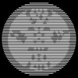 Όξινος αετός β και W διανυσματική απεικόνιση