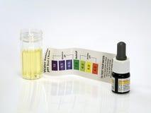 Όξινο όξινο αντιδραστήριο υδραυλικής δοκιμης pH Στοκ εικόνες με δικαίωμα ελεύθερης χρήσης