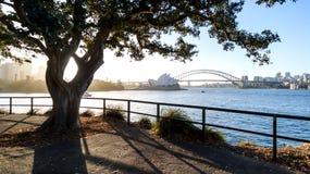 Όπερα του Σίδνεϊ και λιμενική γέφυρα, λιμάνι του Σίδνεϊ Στοκ εικόνα με δικαίωμα ελεύθερης χρήσης