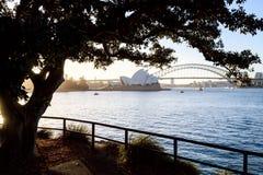 Όπερα του Σίδνεϊ και λιμενική γέφυρα, λιμάνι του Σίδνεϊ Στοκ Εικόνες
