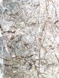 όπως η ανασκόπηση είναι μπορεί να δώσει όψη μαρμάρου στη σύσταση χρησιμοποιούμενη στοκ φωτογραφίες