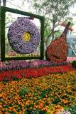 όργανα λουλουδιών μου&sigm Στοκ Φωτογραφίες