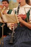 όργανα μουσικά Στοκ Εικόνες