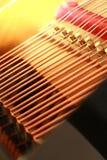 όργανο 16 μουσικό Στοκ Φωτογραφίες