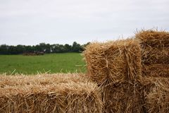 όργωμα αγροτών ανασκόπηση&sigm Στοκ Εικόνα