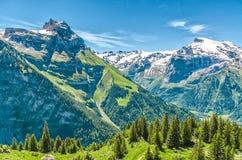 όρη Ελβετός Θέρετρο Engelberg Να ταξιδεψει με τα πόδια μέσω του Swis Στοκ Εικόνες