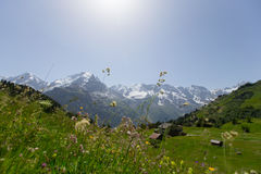 όρη Ελβετία στοκ φωτογραφία με δικαίωμα ελεύθερης χρήσης