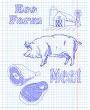 Όρος Eco με έναν χοίρο και ένα κρέας Στοκ φωτογραφίες με δικαίωμα ελεύθερης χρήσης
