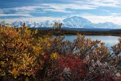 Όρος McKinley από τη λίμνη αντανάκλασης Στοκ Εικόνα