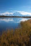 Όρος McKinley από τη λίμνη αντανάκλασης Στοκ φωτογραφία με δικαίωμα ελεύθερης χρήσης