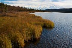 Όρος McKinley από τη λίμνη κατάπληξης Στοκ εικόνα με δικαίωμα ελεύθερης χρήσης