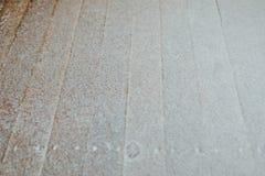 Όρφνωση χιονιού στο ξύλινο υπόβαθρο καθυστερήσεων Στοκ εικόνες με δικαίωμα ελεύθερης χρήσης