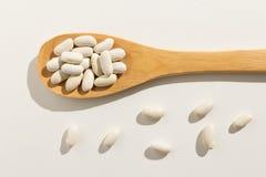 Όσπριο φασολιών ναυτικού Υγιή σιτάρια σε ένα ξύλινο κουτάλι Άσπρο backgr στοκ εικόνα