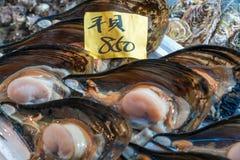 Όστρακα για την πώληση, κεντρική αγορά ψαριών Tsukiji, Τόκιο στοκ εικόνες