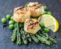 Όστρακα με τους σπόρους σουσαμιού, το σπαράγγι, το λεμόνι και τα πράσινα μπιζέλια Στοκ Φωτογραφίες