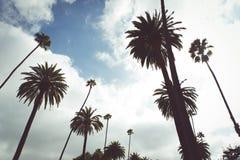 λόφοι της Beverly Στοκ φωτογραφία με δικαίωμα ελεύθερης χρήσης