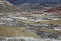 λόφοι Όρεγκον που χρωματί Στοκ Φωτογραφίες