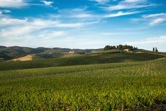 λόφοι tuscan στοκ εικόνες