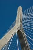 λόφος leonard Μασαχουσέτη π αποθηκών γεφυρών της Βοστώνης zakim Αναμνηστική γέφυρα Hill αποθηκών Zakim Στοκ Εικόνα