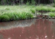 Όχθεις του σκουριασμένου ποταμού Στοκ εικόνες με δικαίωμα ελεύθερης χρήσης