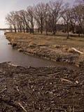 όχθη ποταμού κούτσουρων μ&al στοκ φωτογραφία