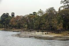 Όχθη ποταμού σε Angkor Wat, Siem Riep, Καμπότζη Στοκ Φωτογραφία