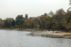 Όχθη ποταμού σε Angkor Wat, Siem Riep, Καμπότζη Στοκ Φωτογραφίες