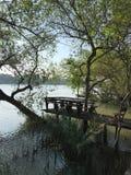 Όχθη ποταμού στο χρόνο πρωινού στοκ φωτογραφίες με δικαίωμα ελεύθερης χρήσης
