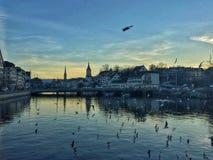 Όχθη ποταμού της πόλης της Ζυρίχης Στοκ φωτογραφίες με δικαίωμα ελεύθερης χρήσης