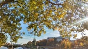 Όχθη ποταμού του Παρισιού το φθινόπωρο Στοκ φωτογραφίες με δικαίωμα ελεύθερης χρήσης