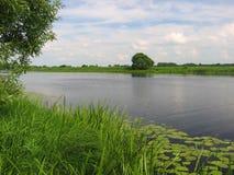 όχθη ποταμού Στοκ φωτογραφίες με δικαίωμα ελεύθερης χρήσης