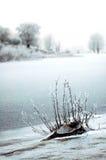 όχθη ποταμού winterlandscape Στοκ Εικόνα