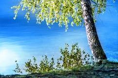 Όχθη της λίμνης  Στοκ Εικόνες