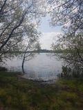 Όχθη της λίμνης και δέντρα στοκ εικόνα