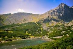 όψη ανατολής της Πολωνίας 1257 υψηλή μετρητών βουνών βουνών skrzyczne Στοκ εικόνες με δικαίωμα ελεύθερης χρήσης
