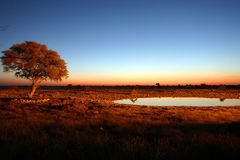 όψη ηλιοβασιλέματος στοκ εικόνες με δικαίωμα ελεύθερης χρήσης