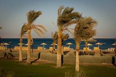 όψη θάλασσας στοκ φωτογραφία με δικαίωμα ελεύθερης χρήσης