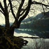 Όψη λιμνών Στοκ Φωτογραφίες