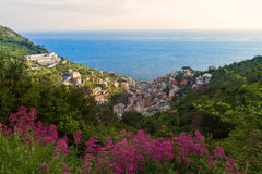 Όψη κοιλάδων Manarola, Cinque Terre, Ιταλία Στοκ Φωτογραφία