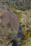 όψη οδογεφυρών κοιλάδων του Ντέβον meldon Στοκ φωτογραφία με δικαίωμα ελεύθερης χρήσης